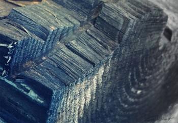 cordulas-foto-1